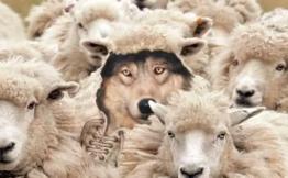 SaaS vs. ASP : 警惕披着羊皮的狼