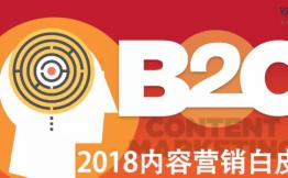 2018B2C内容营销白皮书完整版