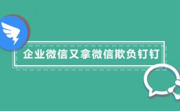企业微信又拿微信欺负钉钉!