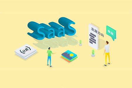 SaaS 创业路线图(55)SaaS 产品分类及其发展方向
