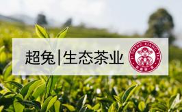 超兔CRM助力「茶业」企业盈利提升