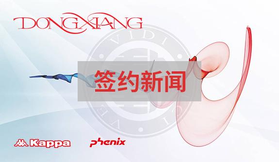 知名国际运动服装品牌企业——中国动向选择泛微OA系统