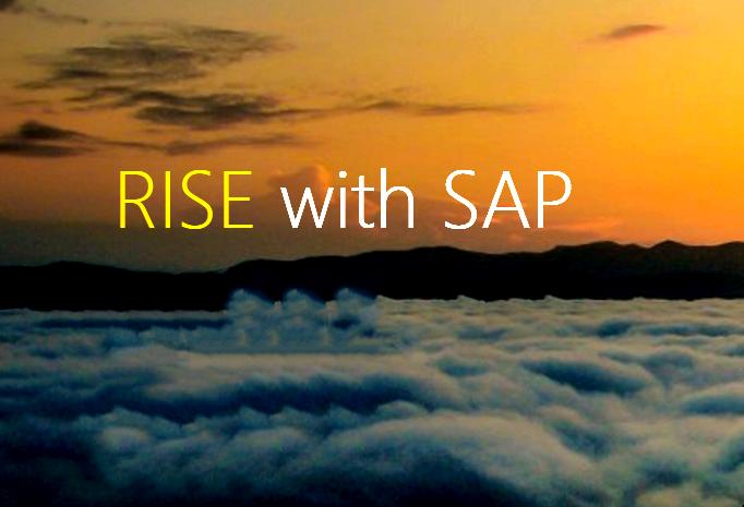 "SAP 发布 ""RISE with SAP"",将为客户交付""业务转型即服务"""